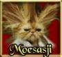 moesasji