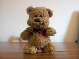 Small_Bear.jpg