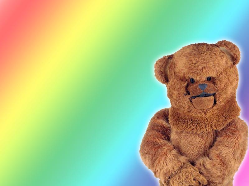 rainbow_bungle_800.jpg